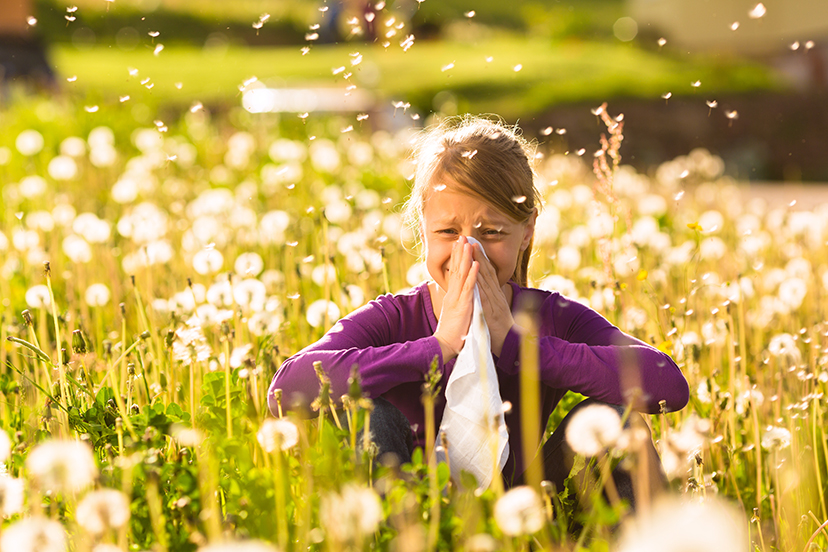 Young girl sneezing in field